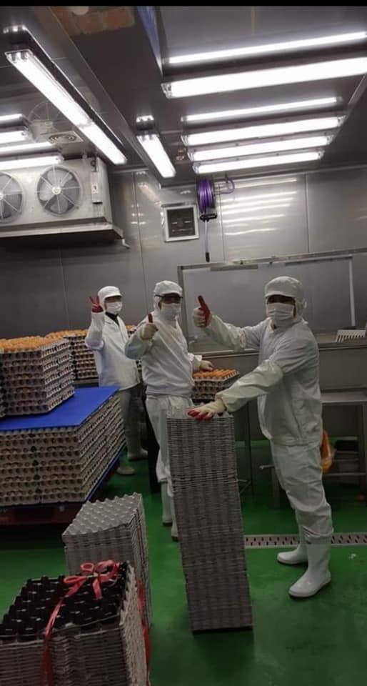รีวิวงานโรงงานอุตสาหกรรมคัดไข่ไก่