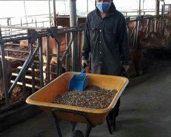 งานเกษตรปศุสัตว์_200618_0006