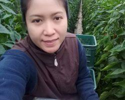 งานเกษตรเพาะปลูก_200618_0003