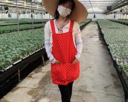 งานเกษตรเพาะปลูก_200618_0018