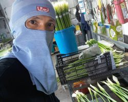 งานเกษตรเพาะปลูก_200618_0031